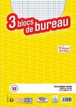 3 BLOCS U 21X29,7 CM 160 PAGES 5X5 NON PERFORES