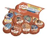 FROMAGE PASTEURISE MINI BABYBEL